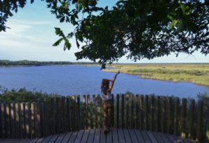 etang de cousseau reserve naturelle etang de cousseau randonnee nature balade carcans lacanau verdure foret les ptits touristes blog voyage 3359x2304